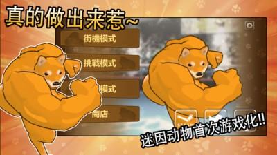 动物之斗手游全角色中文版