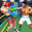 拳击世界锦标赛手游安卓最新版